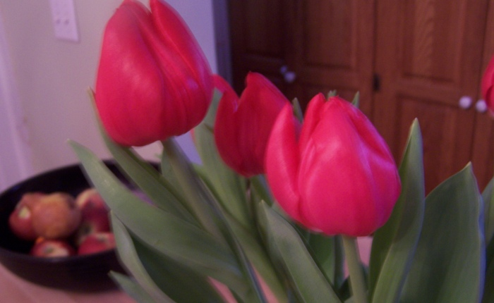 Birthday Tulips and Spring Promises